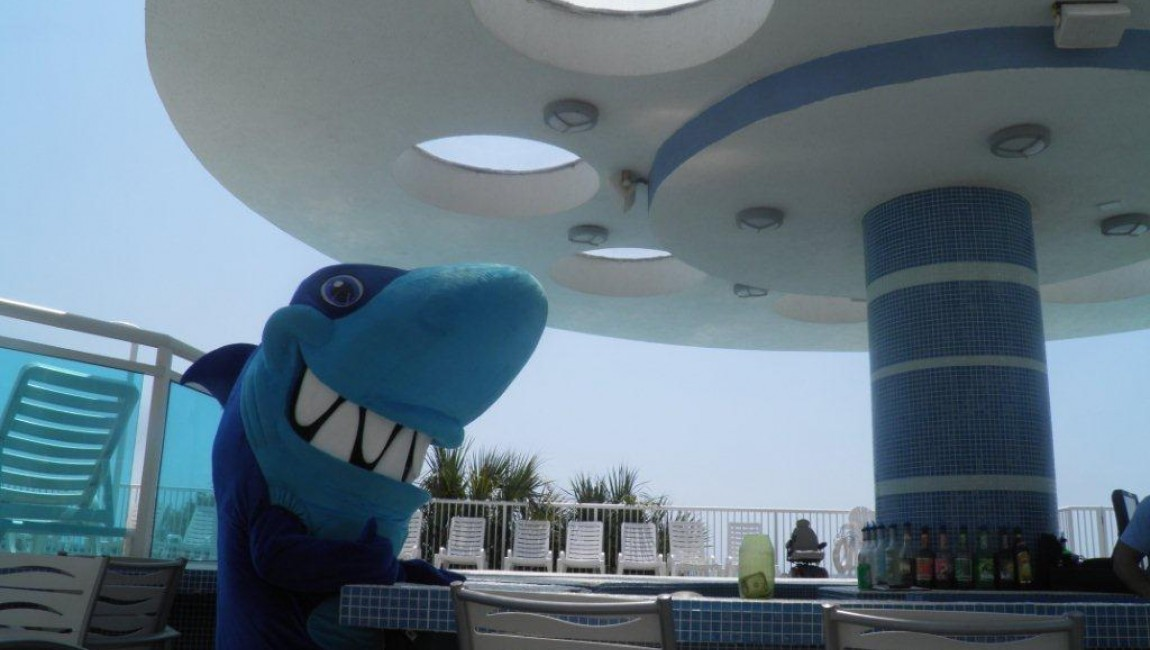 Salty the Friendly Shark: An Interview with hotel BLUE